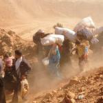 RAPPORTO UNHCR 2014